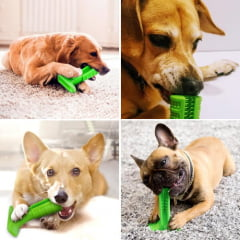 Mordedor e Escova de Dentes Para Cães Antiestresse - Pet Brush